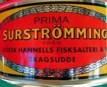 Surströmming szwedzkie kiszone śledzie