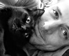 Koty przywiązują się i kochają